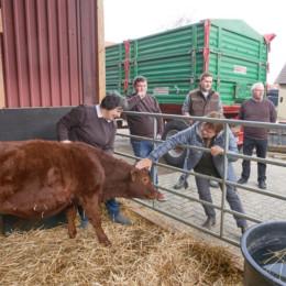 Besuch Landwirte Meier